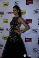 Idea Filmfare Awards 2013 (1)