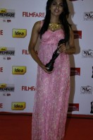 Idea Filmfare Awards 2013 (10)
