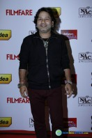 Idea Filmfare Awards 2013 (18)