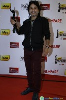 Idea Filmfare Awards 2013 (19)