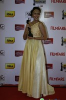 Idea Filmfare Awards 2013 (23)