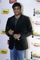 Idea Filmfare Awards 2013 (29)