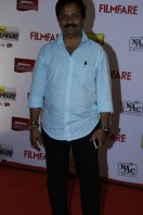 Idea Filmfare Awards 2013 (3)