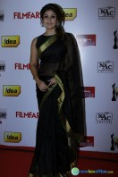 Idea Filmfare Awards 2013 (32)