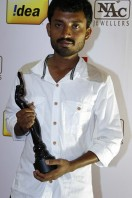 Idea Filmfare Awards 2013 (4)