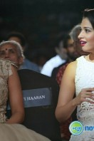Idea Filmfare Awards 2013 (42)