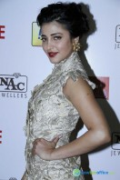 Idea Filmfare Awards 2013 (44)