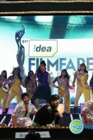 Idea Filmfare Awards 2013 (46)