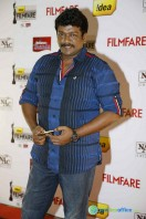 Idea Filmfare Awards 2013 (5)