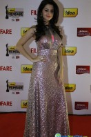 Idea Filmfare Awards 2013 (57)