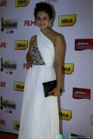 Idea Filmfare Awards 2013 (73)