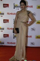 Idea Filmfare Awards 2013 (74)