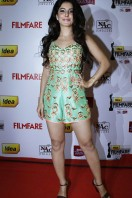 Idea Filmfare Awards 2013 (76)