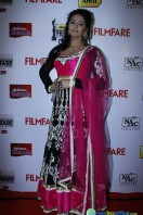 Idea Filmfare Awards 2013 (78)