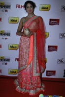 Idea Filmfare Awards 2013 (85)