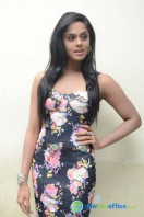 Karthika Nair Latest Stills (31)