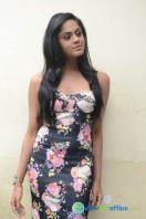 Karthika Nair Latest Stills (34)