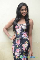 Karthika Nair Latest Stills (36)
