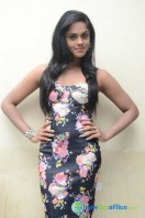 Karthika Nair Latest Stills (37)