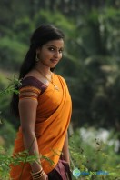 Vethu Vettu Movie Photos (17)