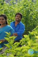 Vethu Vettu Movie Photos (23)