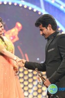 Vijay Awards 2014 Gallery (2)