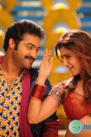Rabhasa New Gallery