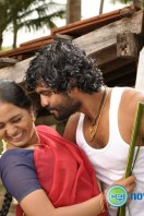 Varusanadu New Stills (6)