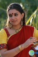 Aranmanai New Photos (22)