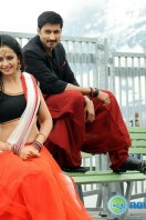 Loukyam Film Stills