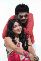Thiruttu VCD Movie Stills (29)