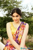Adah Sharma Saree Photoshoot (7)