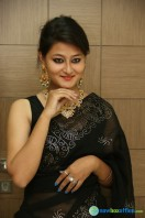 Niloufer in black saree photos (25)