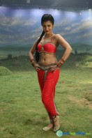 Poojai New Images (23)