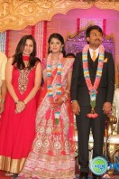 Raj TV MD Daughter Marriage Reception (13)
