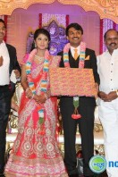 Raj TV MD Daughter Marriage Reception (29)
