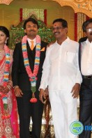 Raj TV MD Daughter Marriage Reception (44)
