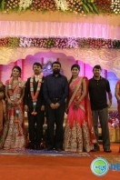 Raj TV MD Daughter Marriage Reception (54)