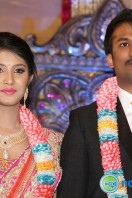 Raj TV MD Daughter Marriage Reception Gallery
