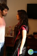 Meaghamann New Gallery (21)