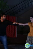 Meaghamann New Gallery (9)