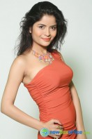 Actress Gehana Vasista Stills (10)