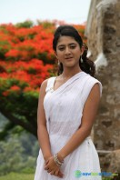 Gayakudu New Gallery (6)