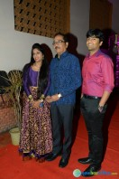 Rajendra Prasad Son Wedding Reception (10)