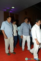 Rajendra Prasad Son Wedding Reception (14)
