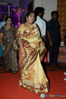Rajendra Prasad Son Wedding Reception (30)