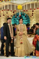 Rajendra Prasad Son Wedding Reception (45)