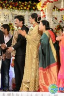 Rajendra Prasad Son Wedding Reception (52)