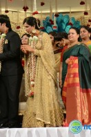 Rajendra Prasad Son Wedding Reception (57)