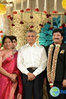 Rajendra Prasad Son Wedding Reception (59)